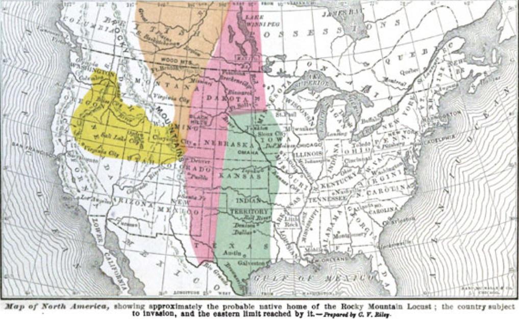 Rocky Mountain Locust Map