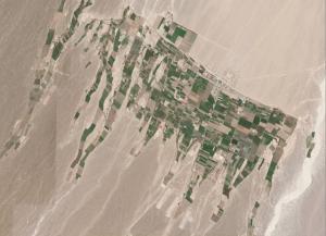 Crop Strips Coastal Peru